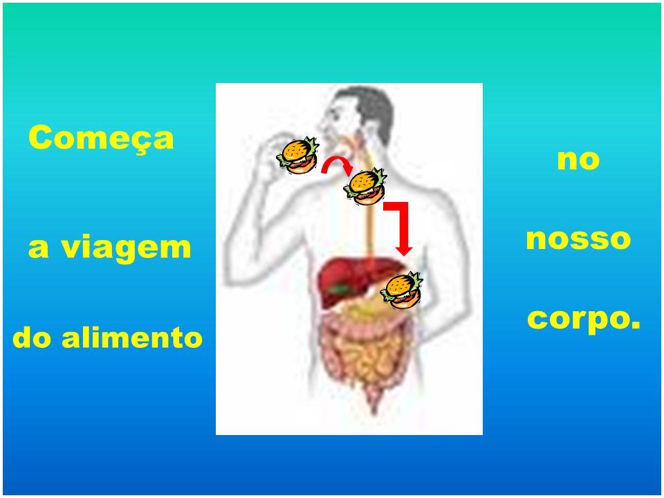 Pois é, no estômago começam a entrar em cena elementos fundamentais para a digestão: os sucos digestivos.