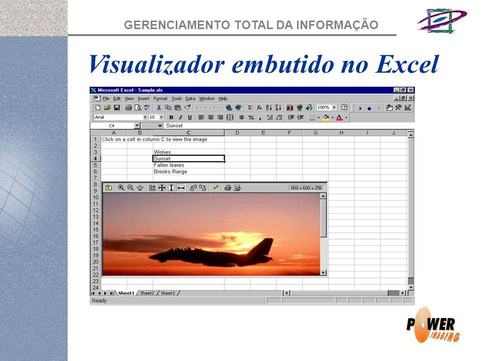 GERENCIAMENTO TOTAL DA INFORMAÇÃO Visualizador embutido no Excel