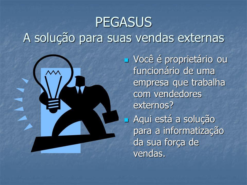 PEGASUS A solução para suas vendas externas Você é proprietário ou funcionário de uma empresa que trabalha com vendedores externos.