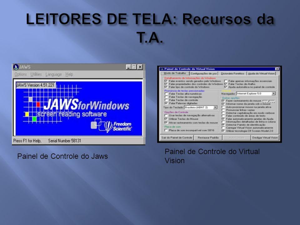 Painel de Controle do Jaws Painel de Controle do Virtual Vision
