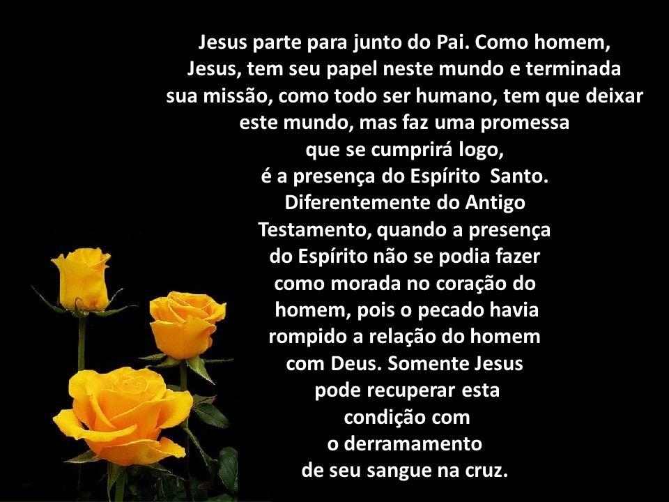 Jesus parte para junto do Pai.