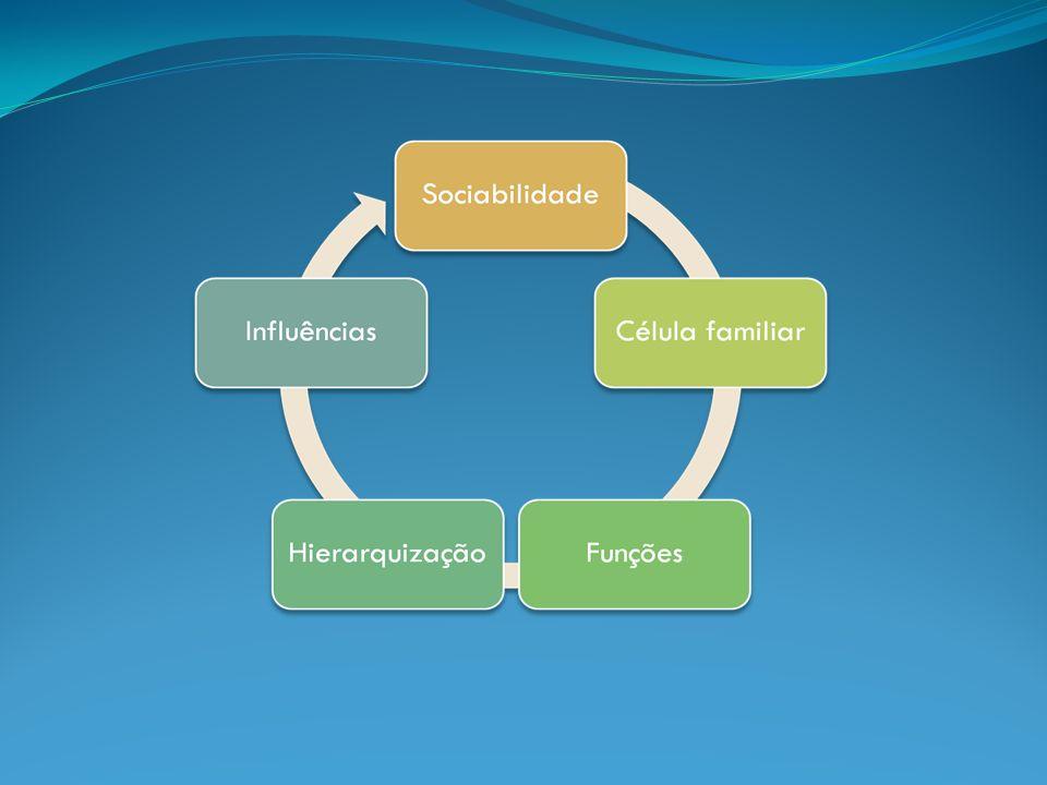 O que nos diferencia: emoções motivações necessidades interesses (cultura, meio social…) expectativas (êxito social…).