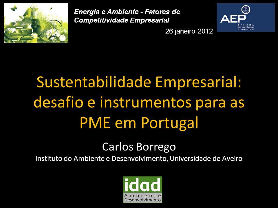 Sustentabilidade Empresarial: desafio e instrumentos para as PME em Portugal Carlos Borrego Instituto do Ambiente e Desenvolvimento, Universidade de A