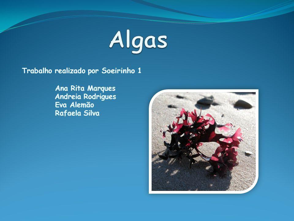 Índice O que são algas? Algas para fins medicinais; Receitas com algas; Bibliografia; Conclusão.