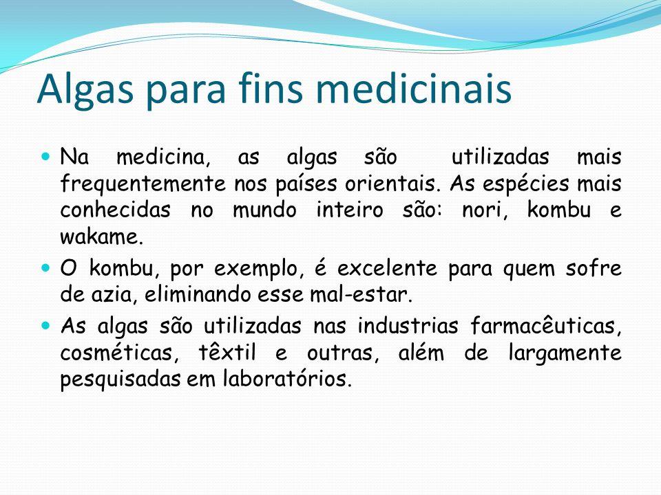 Algas para fins medicinais Na medicina, as algas são utilizadas mais frequentemente nos países orientais. As espécies mais conhecidas no mundo inteiro