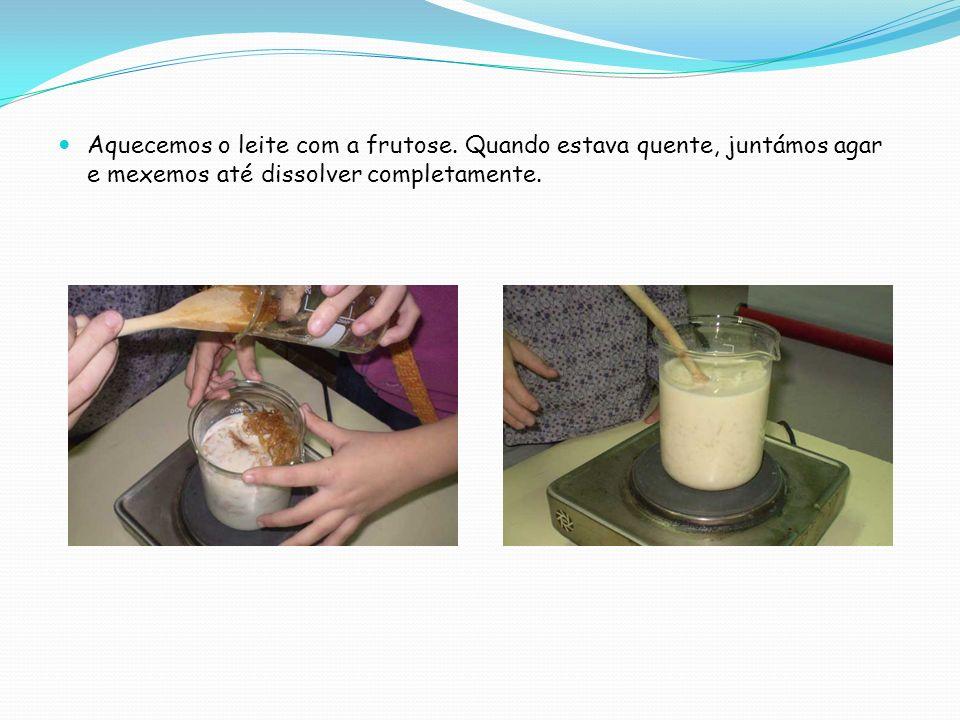 Aquecemos o leite com a frutose. Quando estava quente, juntámos agar e mexemos até dissolver completamente.