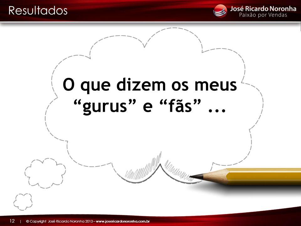 | © Copyright José Ricardo Noronha 2013 – www.josericardonoronha.com.br 12 O que dizem os meus gurus e fãs... Resultados