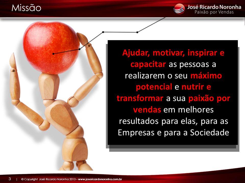 | © Copyright José Ricardo Noronha 2013 – www.josericardonoronha.com.br 14 Conheci o José Ricardo no início do movimento do e-Learning no Brasil, no início dos anos 2000 e posso dizer: o Zé Ricardo realmente é um profissional de vendas diferenciado.