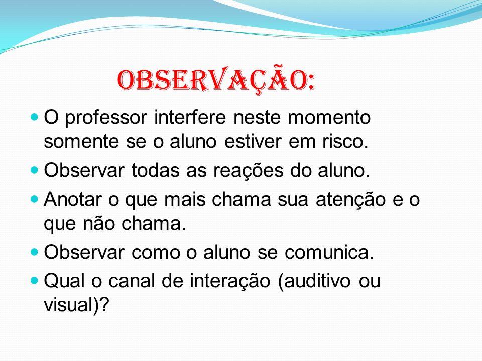 Observação: O professor interfere neste momento somente se o aluno estiver em risco.