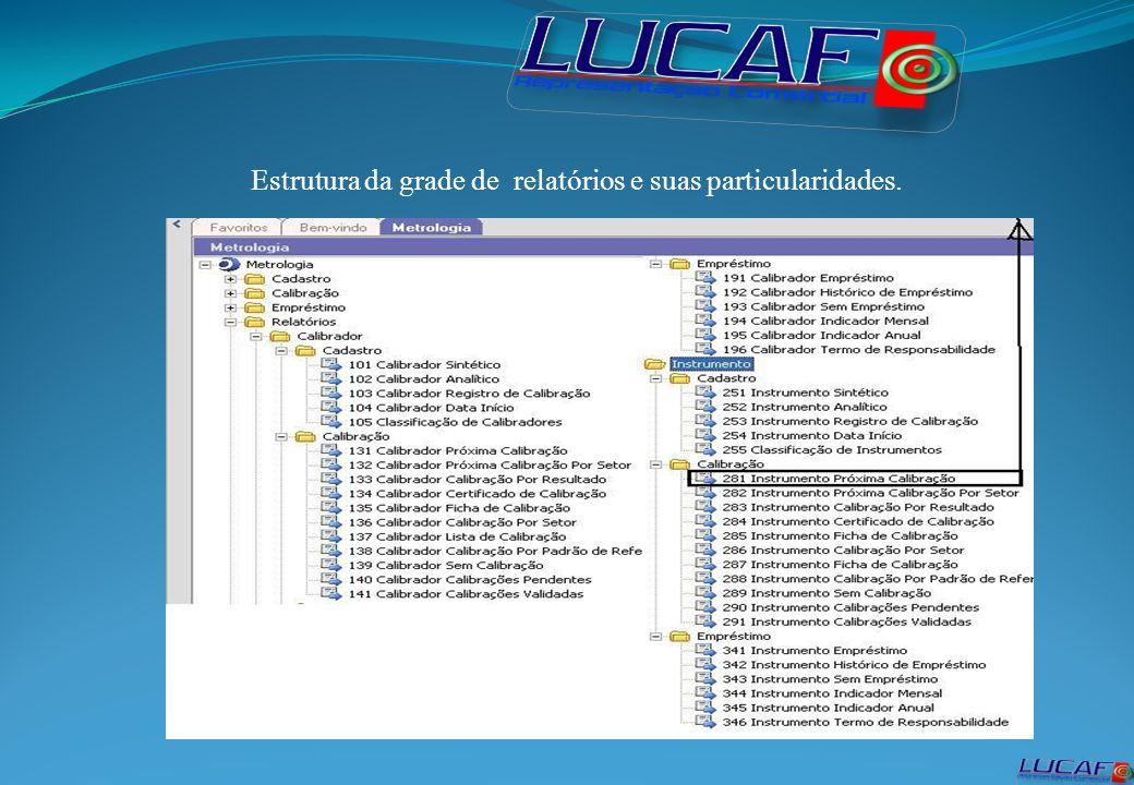 Estrutura da grade de relatórios e suas particularidades.