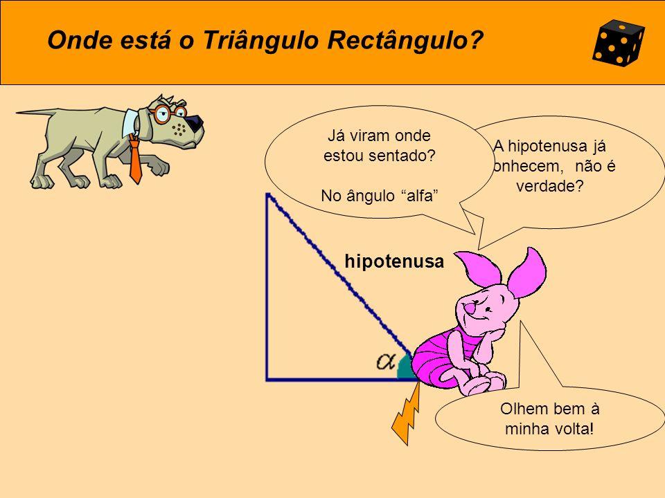 A Trigonometria… Tem origem na Grécia: trigonos quer dizer triângulo e metrûm quer dizer medida.
