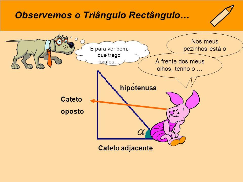Onde está o Triângulo Rectângulo.A hipotenusa já conhecem, não é verdade.