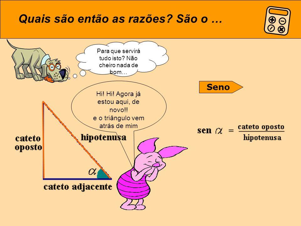 Concluindo: num Triângulo Rectângulo, tenho… Cateto oposto Cateto adjacente Mas tudo depende do sítio onde estamos!!.