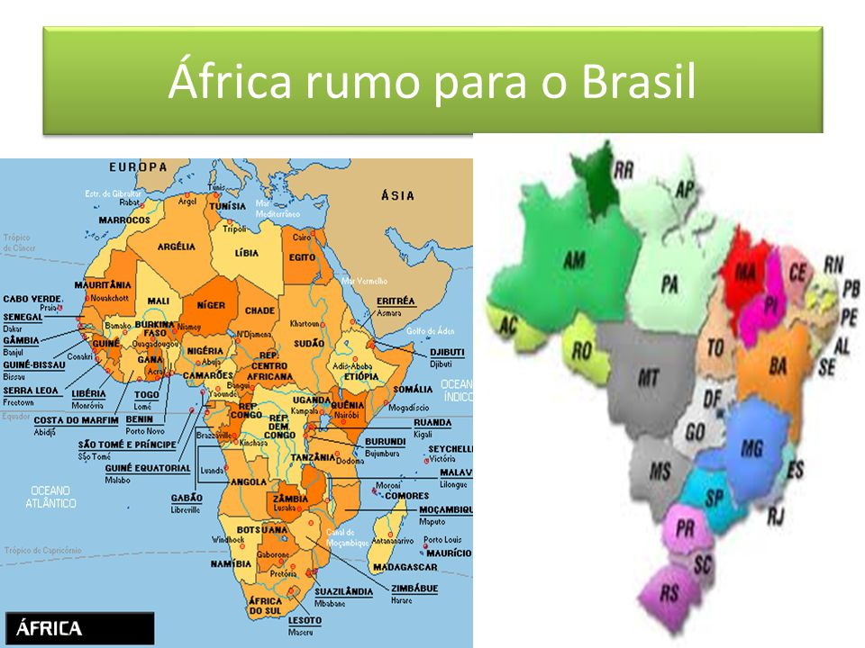 A influência da África na América do Sul – música e alimentação Gustavo Akio Ogassavara Matsuo 3 ano C profa. Vanessa