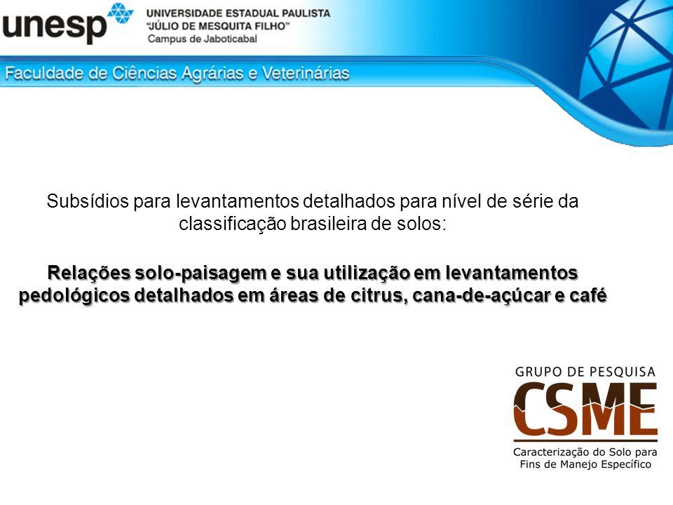 Subsídios para levantamentos detalhados para nível de série da classificação brasileira de solos: Relações solo-paisagem e sua utilização em levantame