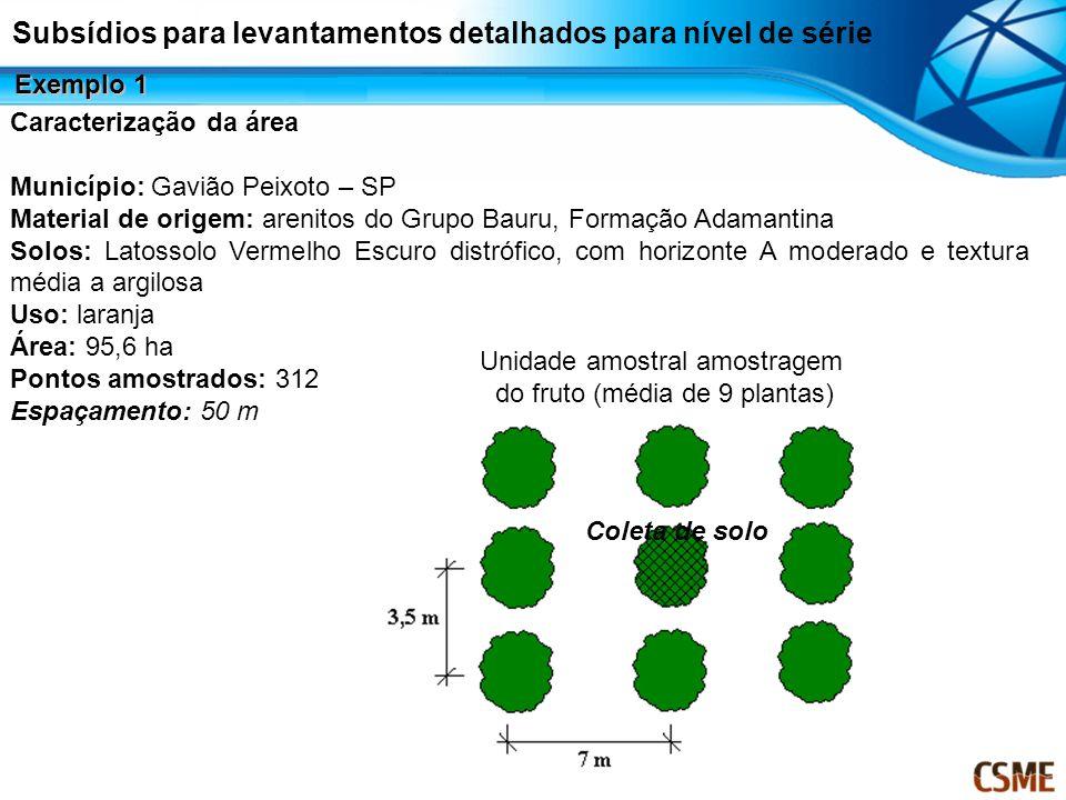 Caracterização da área Município: Gavião Peixoto – SP Material de origem: arenitos do Grupo Bauru, Formação Adamantina Solos: Latossolo Vermelho Escur