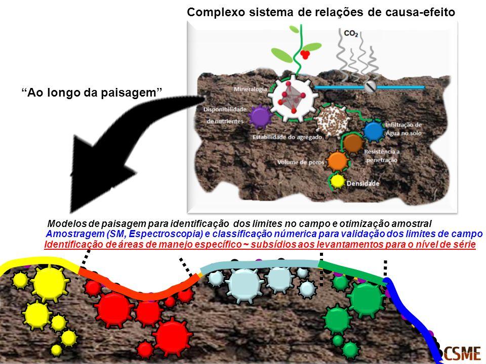 Complexo sistema de relações de causa-efeito Ao longo da paisagem Modelos de paisagem para identificação dos limites no campo e otimização amostral Am