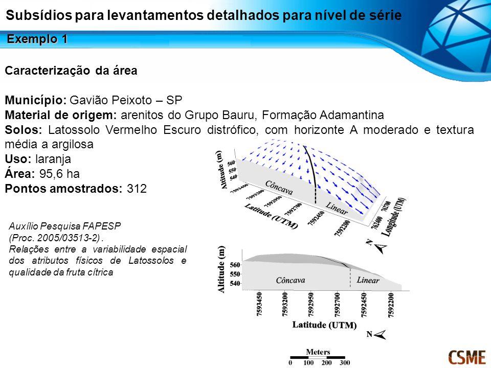 Subsídios para levantamentos detalhados para nível de série Exemplo 1 Auxílio Pesquisa FAPESP (Proc. 2005/03513-2). Relações entre a variabilidade esp