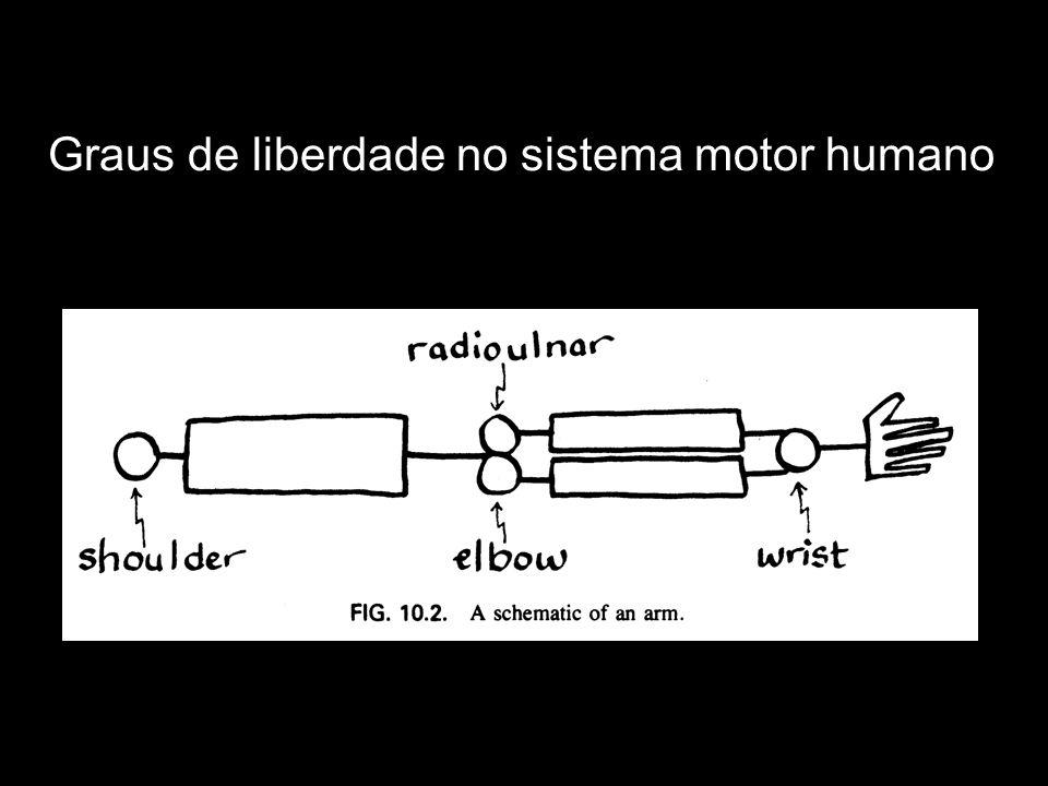 Graus de liberdade no sistema motor humano