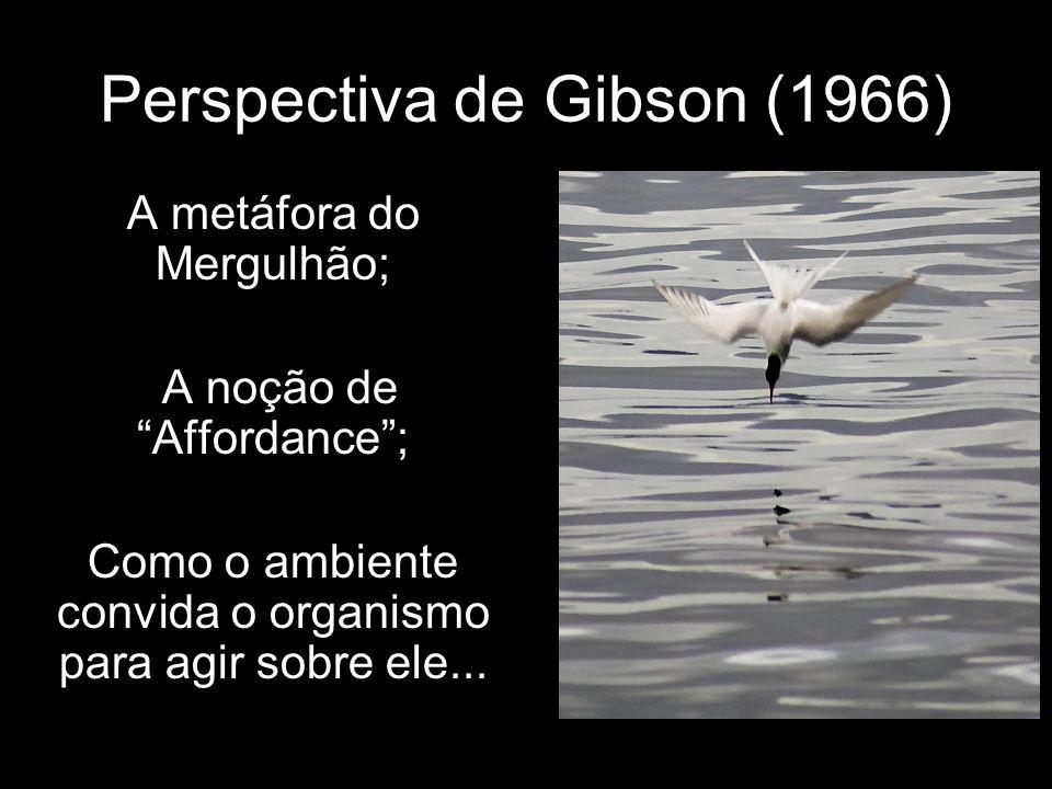 Perspectiva de Gibson (1966) A metáfora do Mergulhão; A noção de Affordance; Como o ambiente convida o organismo para agir sobre ele...
