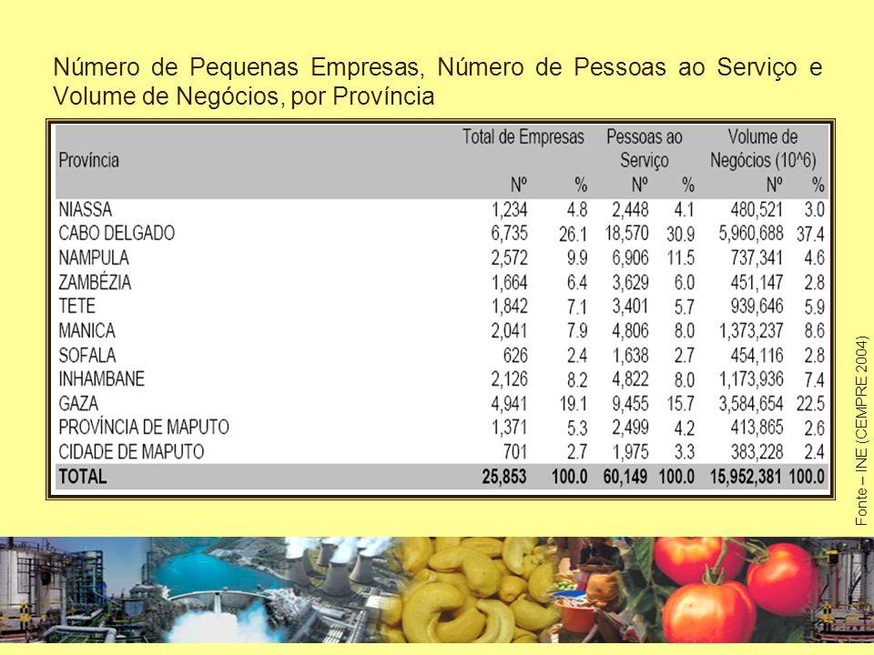 Número de Pequenas Empresas, Número de Pessoas ao Serviço e Volume Negócios, segundo a CAE Fonte – INE (CEMPRE 2004)