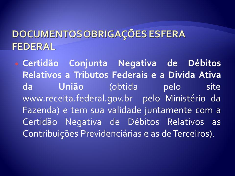 Certidão Conjunta Negativa de Débitos Relativos a Tributos Federais e a Divida Ativa da União (obtida pelo site www.receita.federal.gov.br pelo Minist