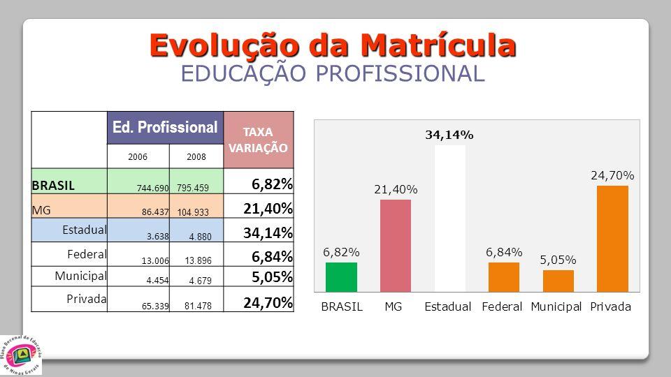 Evolução da Matrícula EDUCAÇÃO PROFISSIONAL Ed. Profissional TAXA VARIAÇÃO 20062008 BRASIL 744.690 795.459 6,82% MG 86.437 104.933 21,40% Estadual 3.6