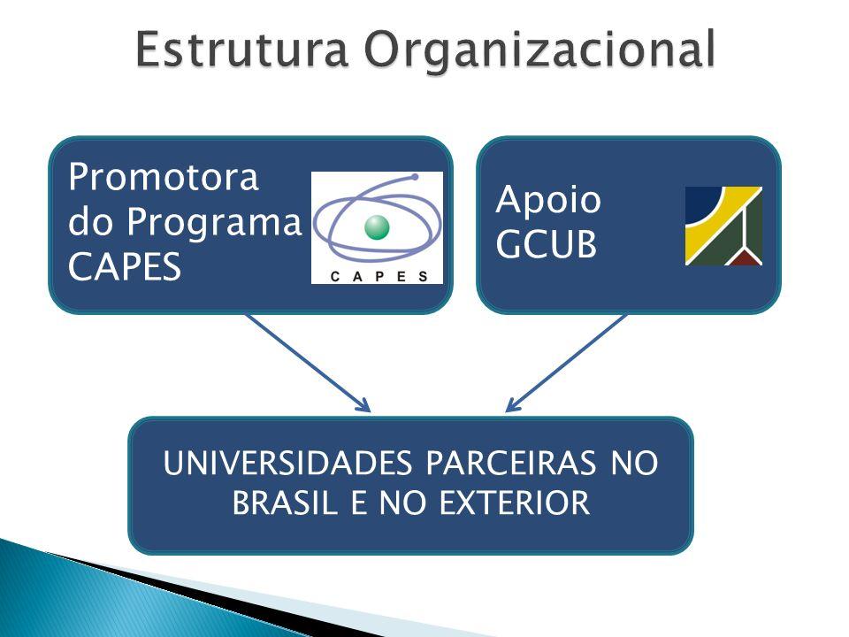 Promotora do Programa CAPES Apoio GCUB UNIVERSIDADES PARCEIRAS NO BRASIL E NO EXTERIOR
