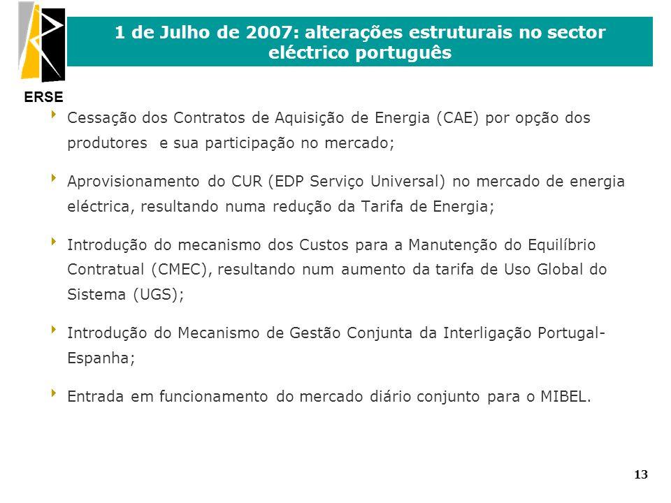 ERSE 13 1 de Julho de 2007: alterações estruturais no sector eléctrico português Cessação dos Contratos de Aquisição de Energia (CAE) por opção dos pr