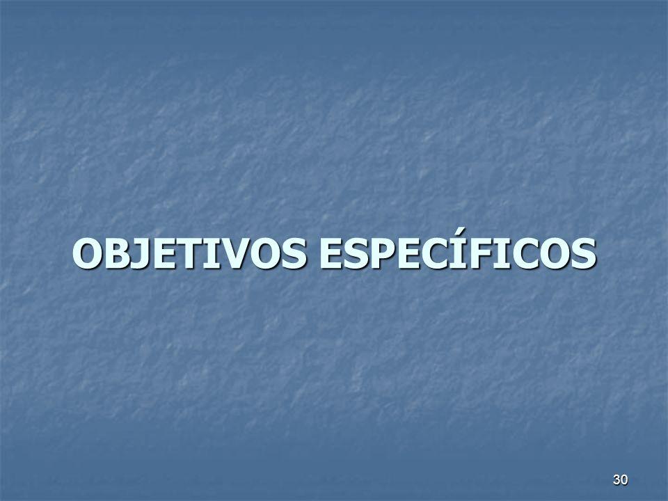 30 OBJETIVOS ESPECÍFICOS