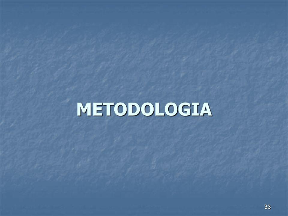 33 METODOLOGIA