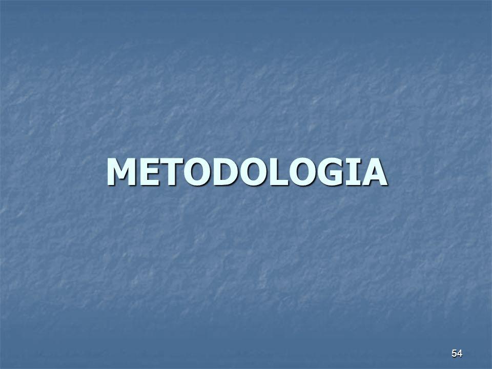 54 METODOLOGIA