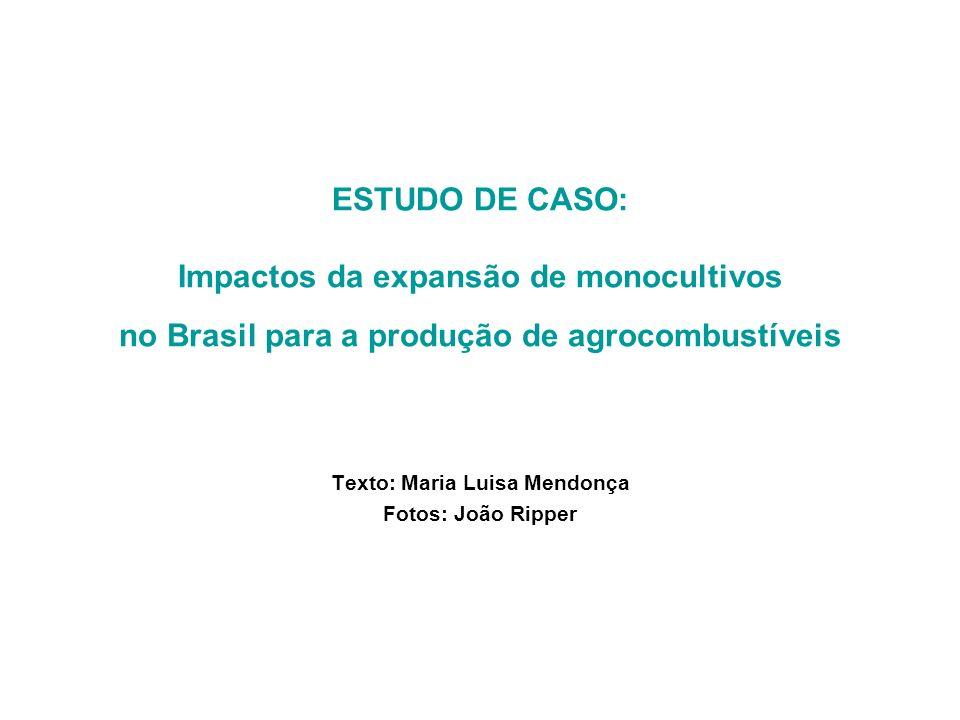 ESTUDO DE CASO: Impactos da expansão de monocultivos no Brasil para a produção de agrocombustíveis Texto: Maria Luisa Mendonça Fotos: João Ripper