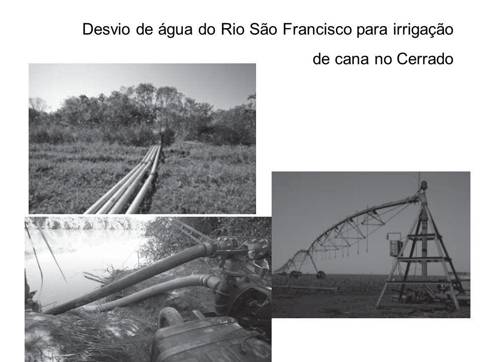 Desvio de água do Rio São Francisco para irrigação de cana no Cerrado