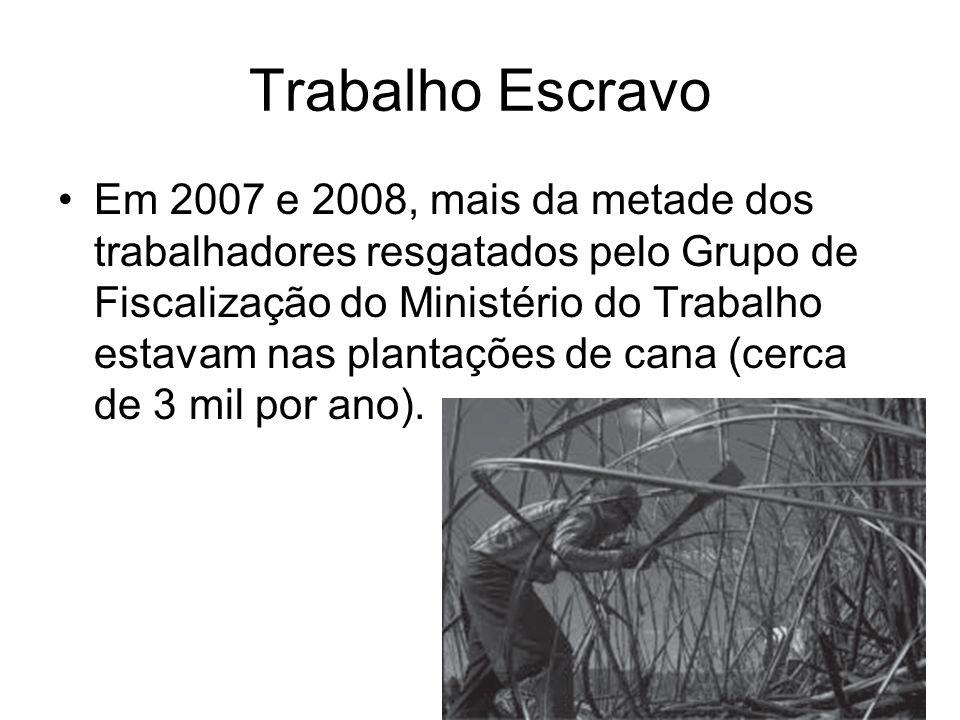 Trabalho Escravo Em 2007 e 2008, mais da metade dos trabalhadores resgatados pelo Grupo de Fiscalização do Ministério do Trabalho estavam nas plantaçõ