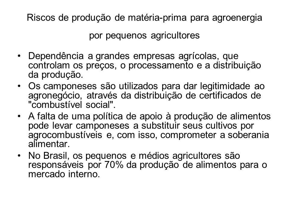 Riscos de produção de matéria-prima para agroenergia por pequenos agricultores Dependência a grandes empresas agrícolas, que controlam os preços, o pr