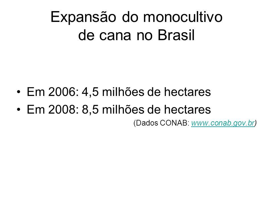 Expansão do monocultivo de cana no Brasil Em 2006: 4,5 milhões de hectares Em 2008: 8,5 milhões de hectares (Dados CONAB: www.conab.gov.br)www.conab.g