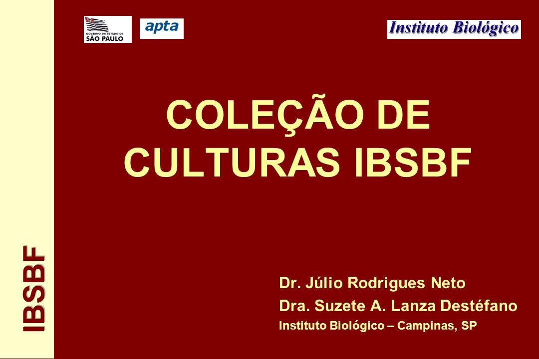 COLEÇÃO DE CULTURAS IBSBF Dr. Júlio Rodrigues Neto Dra. Suzete A. Lanza Destéfano Instituto Biológico – Campinas, SP
