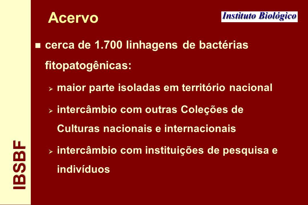 Acervo n 37 linhagens Tipo n 54 linhagens Patotipo n em nível mundial, a Coleção IBSBF representa a maior fonte de linhagens bacterianas fitopatogênicas oriundas de áreas tropicais.