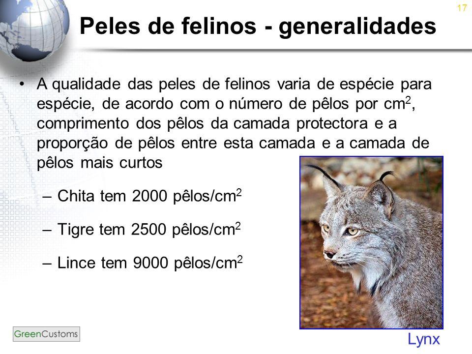 17 Peles de felinos - generalidades A qualidade das peles de felinos varia de espécie para espécie, de acordo com o número de pêlos por cm 2, comprime