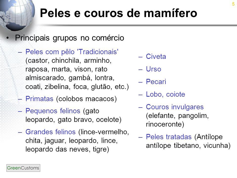 5 Peles e couros de mamífero Principais grupos no comércio –Peles com pêlo 'Tradicionais' (castor, chinchila, arminho, raposa, marta, vison, rato almi