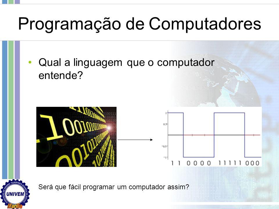 Programação de Computadores O que é língua? O conjunto das palavras e expressões usadas por um povo, por uma nação, e o conjunto de regras da sua gram