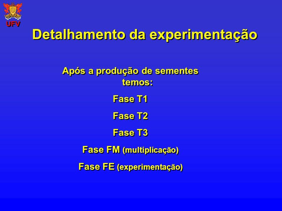 Após a produção de sementes temos: Fase T1 Fase T2 Fase T3 Fase FM (multiplicação) Fase FE (experimentação) Após a produção de sementes temos: Fase T1