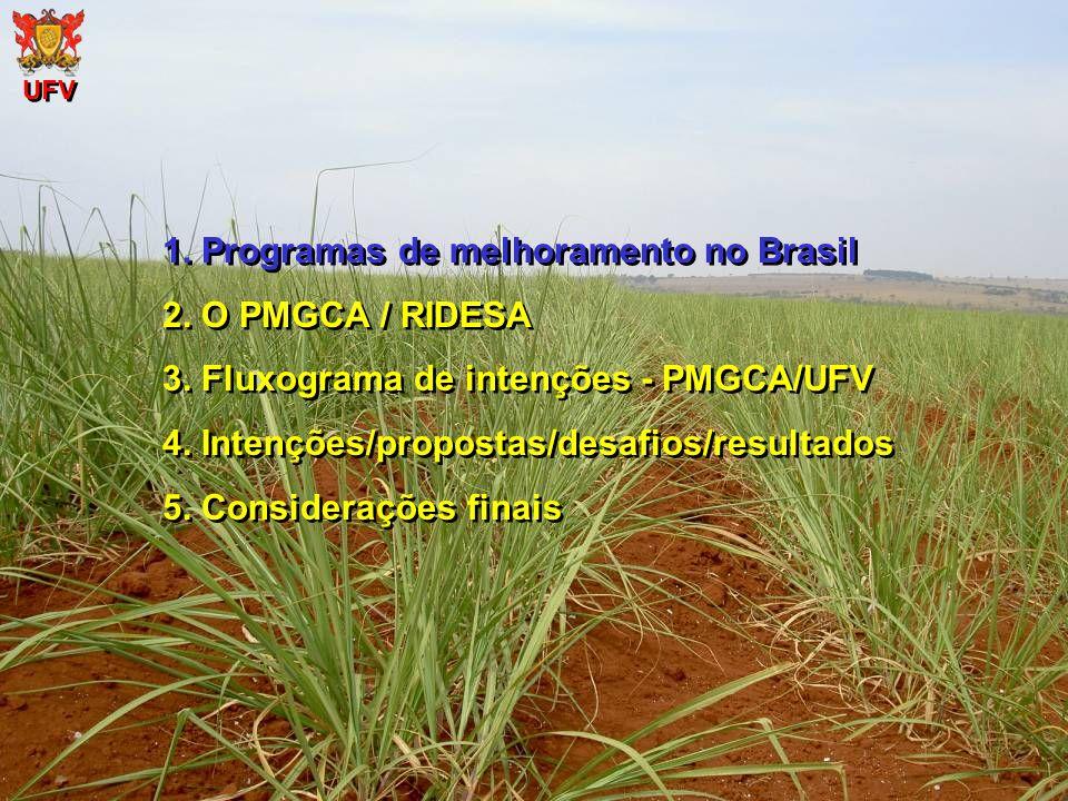UFV 1. Programas de melhoramento no Brasil 2. O PMGCA / RIDESA 3. Fluxograma de intenções - PMGCA/UFV 4. Intenções/propostas/desafios/resultados 5. Co