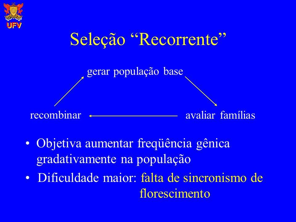 Seleção Recorrente Objetiva aumentar freqüência gênica gradativamente na população gerar população base recombinar avaliar famílias Dificuldade maior: