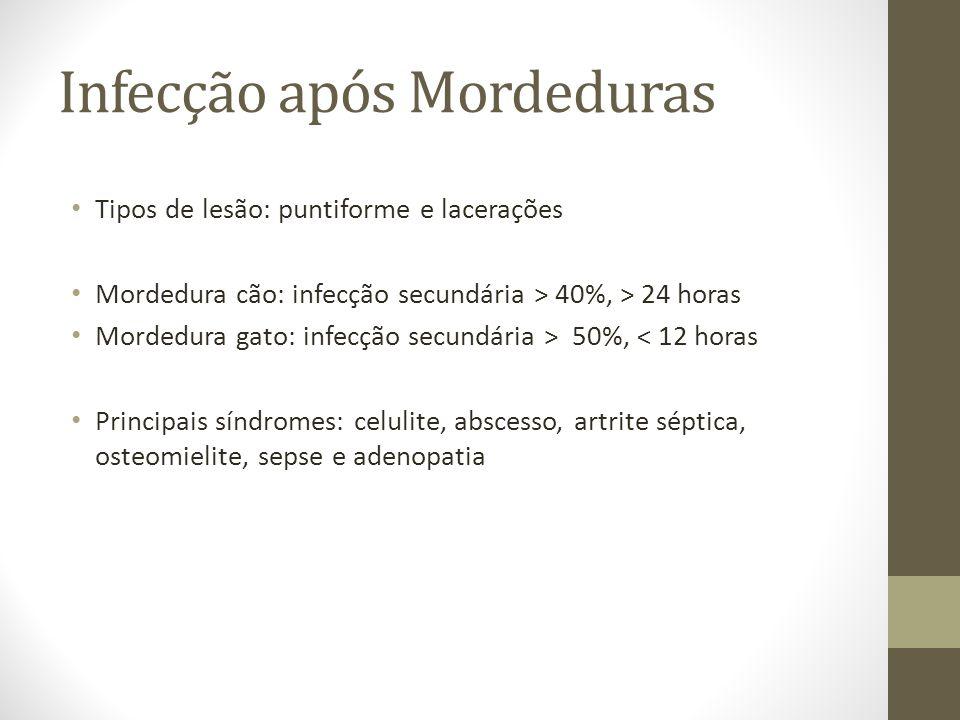 Tipos de lesão: puntiforme e lacerações Mordedura cão: infecção secundária > 40%, > 24 horas Mordedura gato: infecção secundária > 50%, < 12 horas Pri