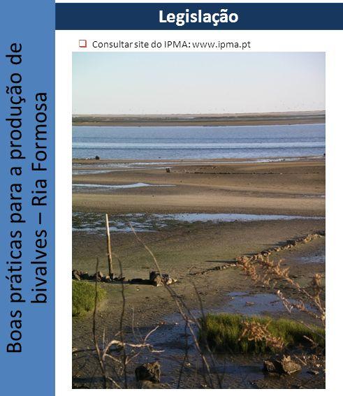 Consultar site do IPMA: www.ipma.pt Boas práticas para a produção de bivalves – Ria Formosa Legislação