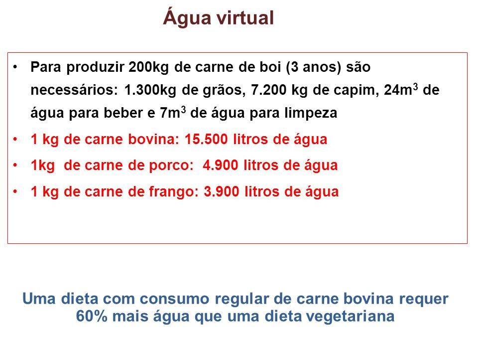 Água virtual Para produzir 200kg de carne de boi (3 anos) são necessários: 1.300kg de grãos, 7.200 kg de capim, 24m 3 de água para beber e 7m 3 de água para limpeza 1 kg de carne bovina: 15.500 litros de água 1kg de carne de porco: 4.900 litros de água 1 kg de carne de frango: 3.900 litros de água Uma dieta com consumo regular de carne bovina requer 60% mais água que uma dieta vegetariana