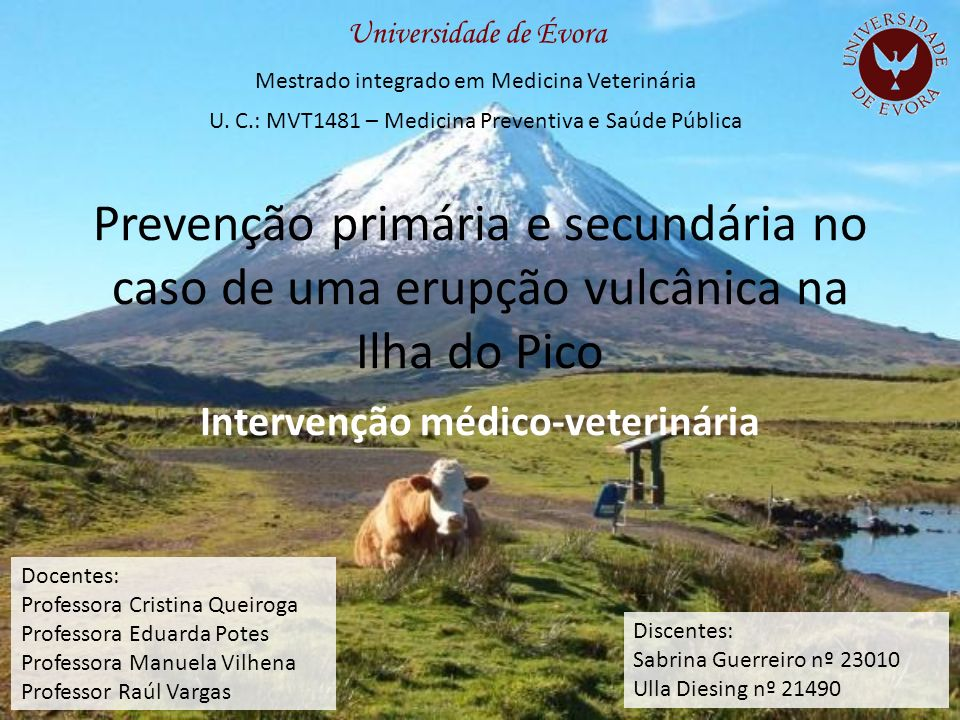 Prevenção primária e secundária no caso de uma erupção vulcânica na Ilha do Pico Intervenção médico-veterinária Universidade de Évora Mestrado integra