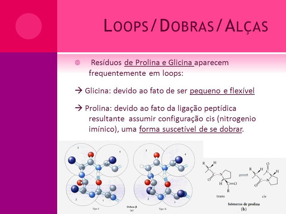 L OOPS /D OBRAS /A LÇAS Resíduos de Prolina e Glicina aparecem frequentemente em loops: Glicina: devido ao fato de ser pequeno e flexível Prolina: dev